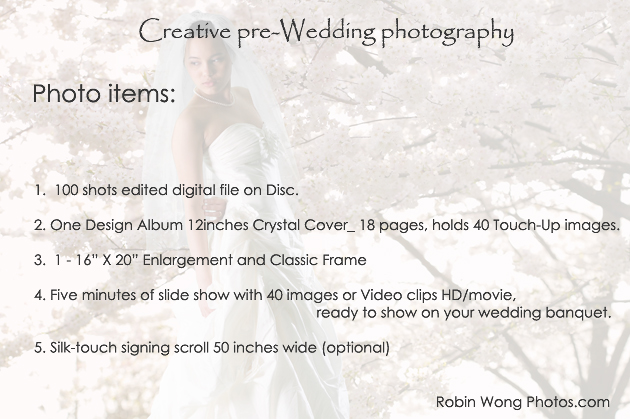 pre-wedding photography price_2