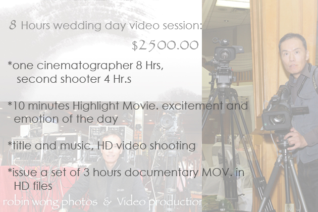 Video weddingPackage 2