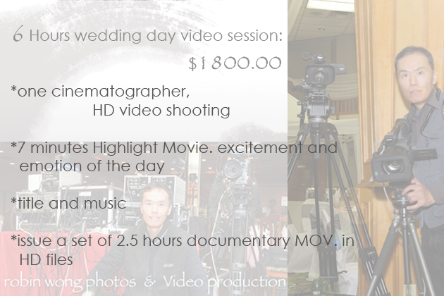 Video weddingPackage