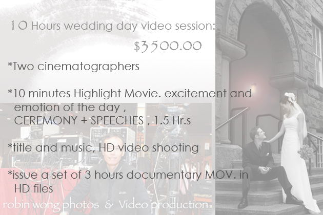 Video weddingPackage_3